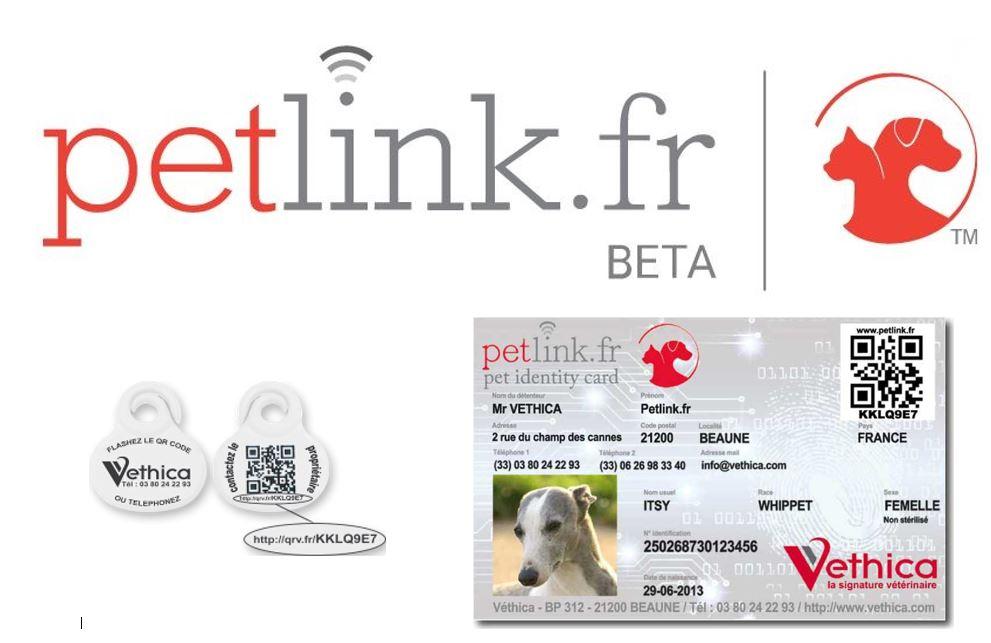 information-petlink